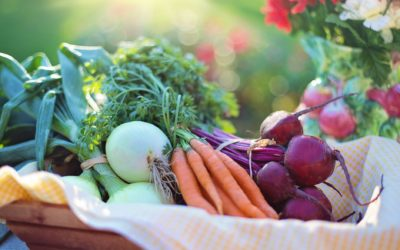 Calcium, Iron & Protein in a Plant-Based Diet