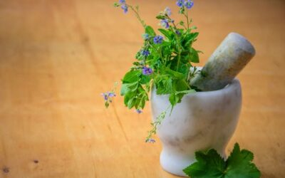 12 Bible Verses about Herbs | KJV